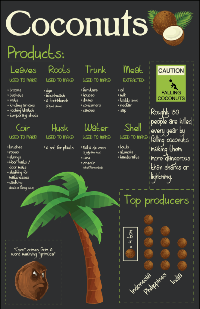 Coconut Products & Coconut Uses
